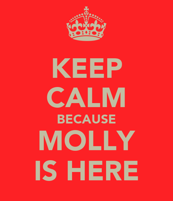 KEEP CALM BECAUSE MOLLY IS HERE