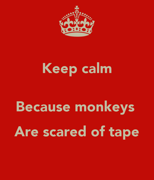Keep calm  Because monkeys  Are scared of tape