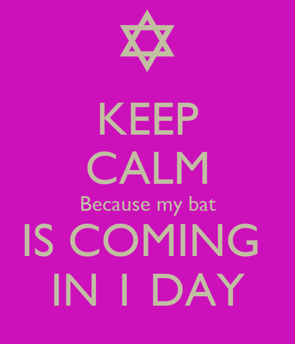 KEEP CALM Because my bat IS COMING  IN 1 DAY
