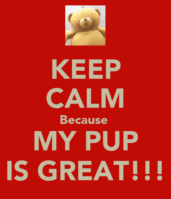 KEEP CALM Because  MY PUP IS GREAT!!!
