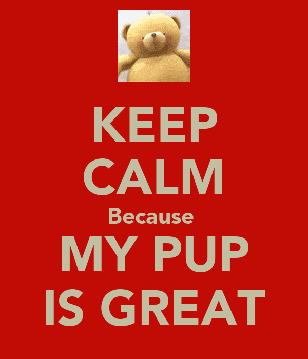 KEEP CALM Because  MY PUP IS GREAT
