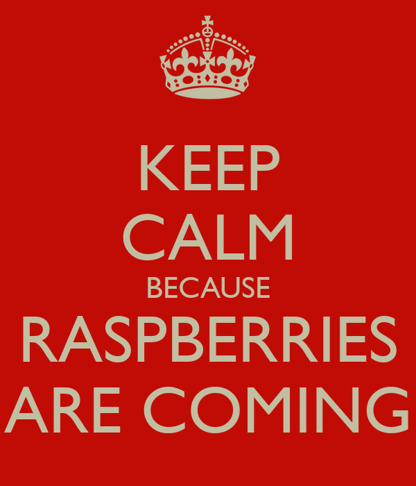 KEEP CALM BECAUSE RASPBERRIES ARE COMING