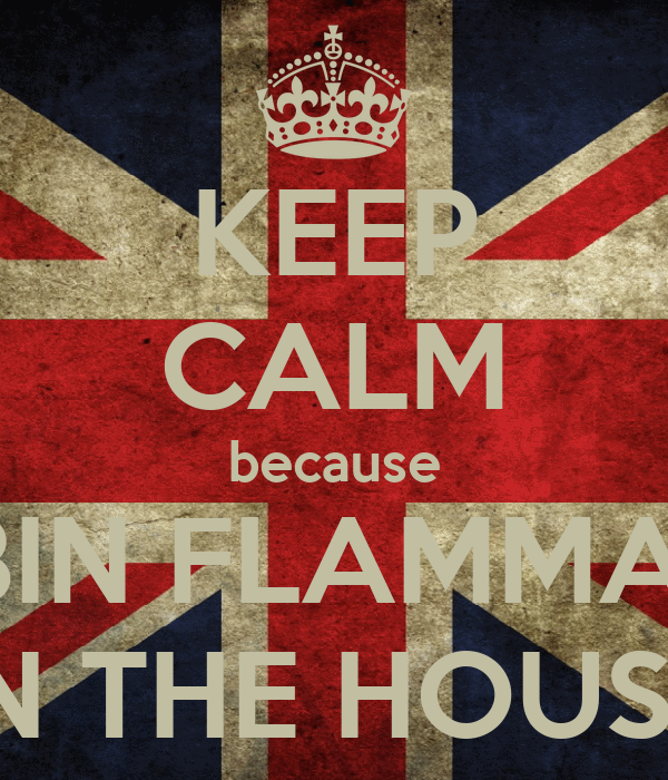 KEEP CALM because ROBIN FLAMMABLE IN THE HOUSE