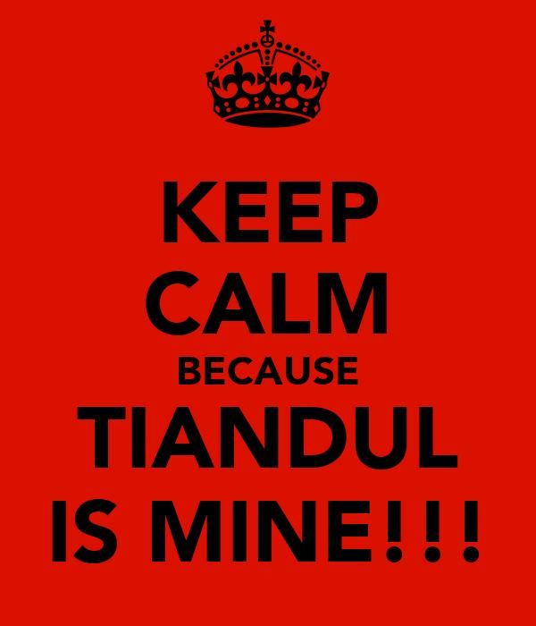 KEEP CALM BECAUSE TIANDUL IS MINE!!!