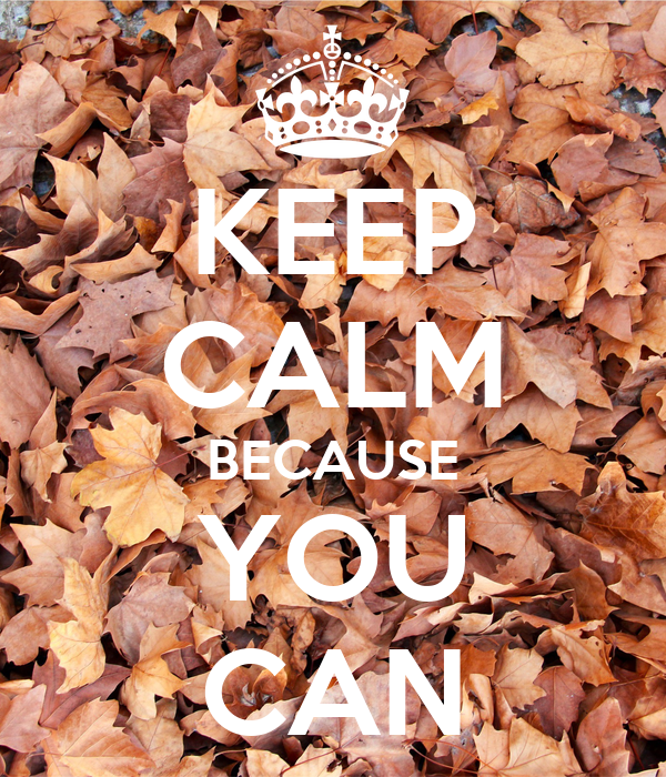 KEEP CALM BECAUSE YOU CAN