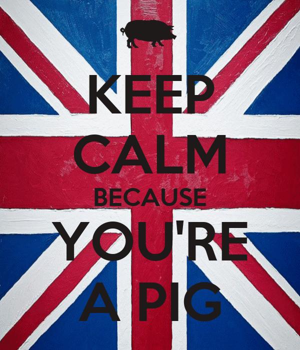 KEEP CALM BECAUSE YOU'RE A PIG