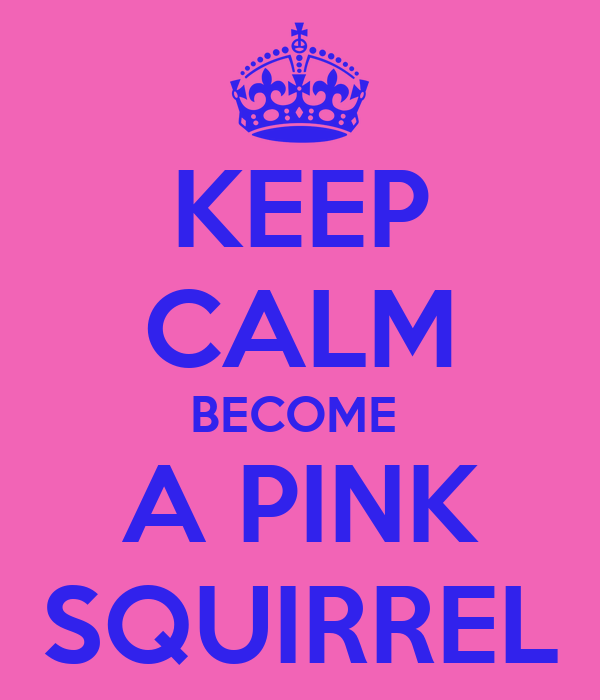 KEEP CALM BECOME  A PINK SQUIRREL
