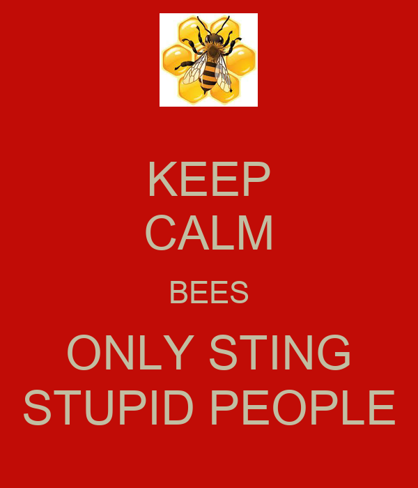 KEEP CALM BEES ONLY STING STUPID PEOPLE