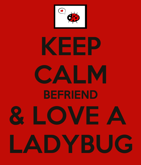 KEEP CALM BEFRIEND & LOVE A  LADYBUG