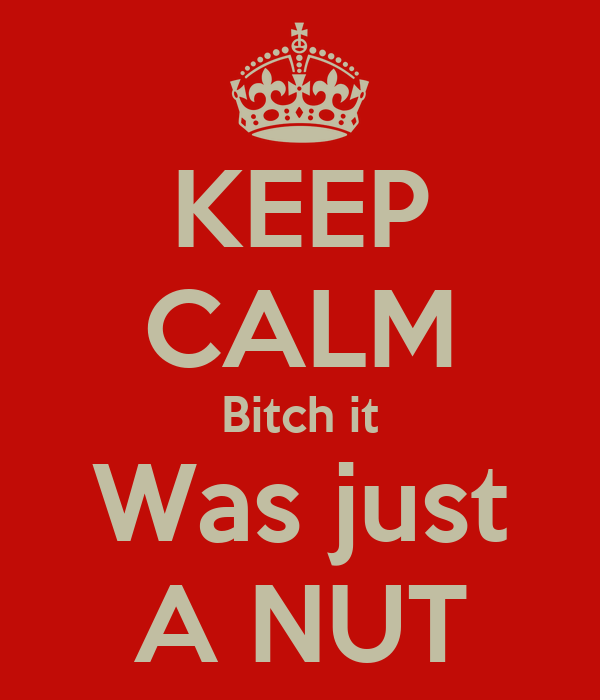 KEEP CALM Bitch it Was just A NUT