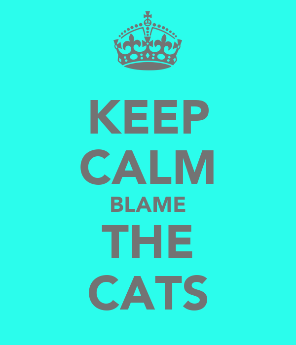KEEP CALM BLAME THE CATS