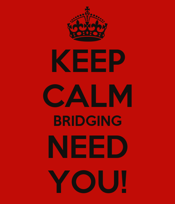 KEEP CALM BRIDGING NEED YOU!