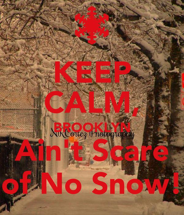KEEP CALM, BROOKLYN Ain't Scare of No Snow!
