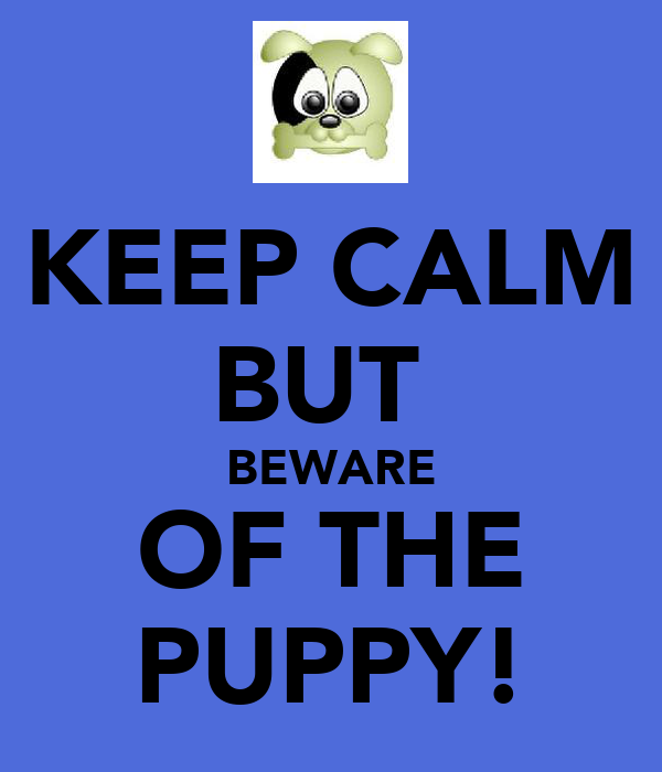 KEEP CALM BUT  BEWARE OF THE PUPPY!