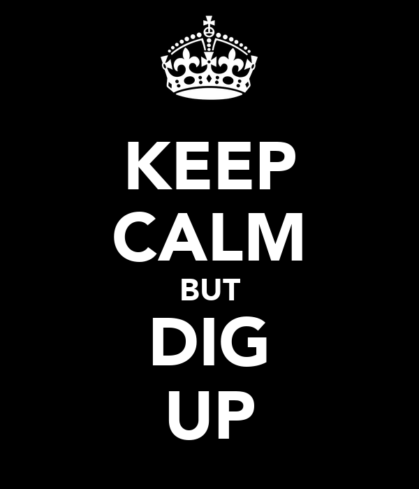 KEEP CALM BUT DIG UP