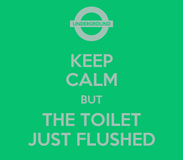 KEEP CALM BUT THE TOILET JUST FLUSHED