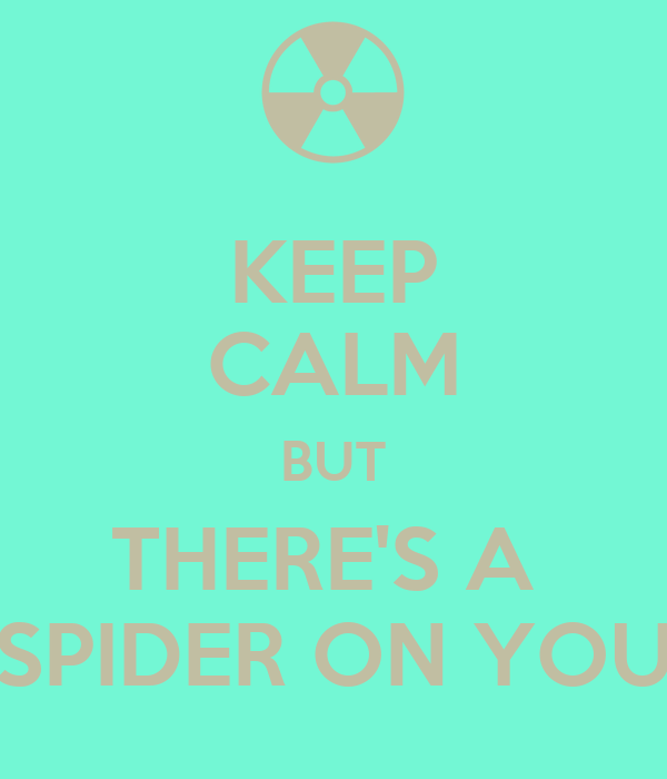 KEEP CALM BUT THERE'S A  SPIDER ON YOU