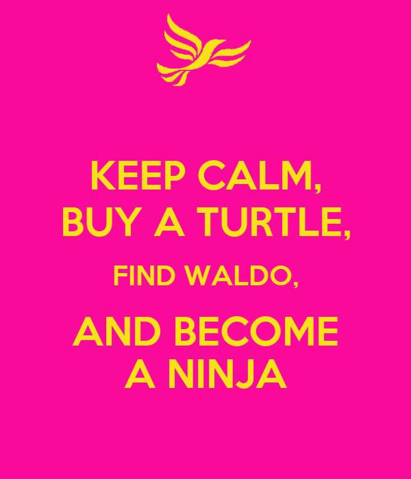 KEEP CALM, BUY A TURTLE, FIND WALDO, AND BECOME A NINJA