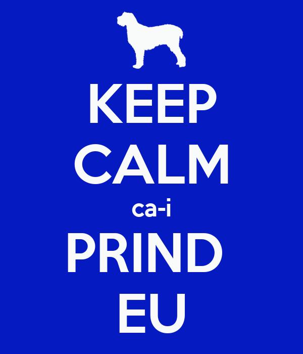 KEEP CALM ca-i PRIND  EU