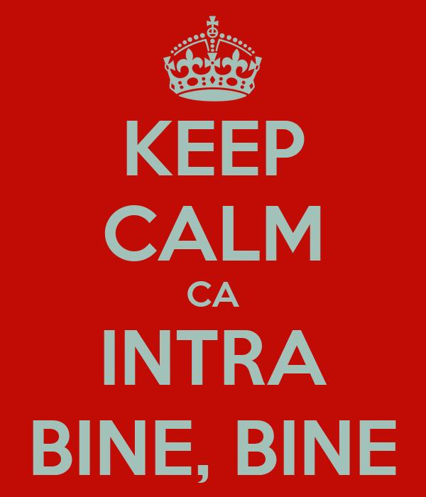 KEEP CALM CA INTRA BINE, BINE