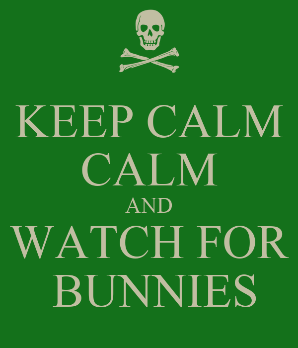 KEEP CALM CALM AND WATCH FOR  BUNNIES