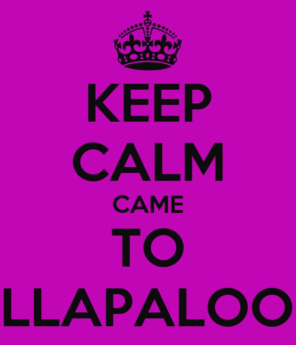 KEEP CALM CAME TO LOLLAPALOOZA