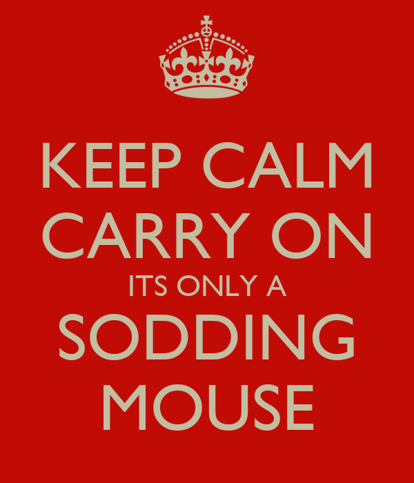 KEEP CALM CARRY ON ITS ONLY A SODDING MOUSE