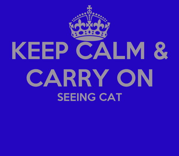 KEEP CALM & CARRY ON SEEING CAT