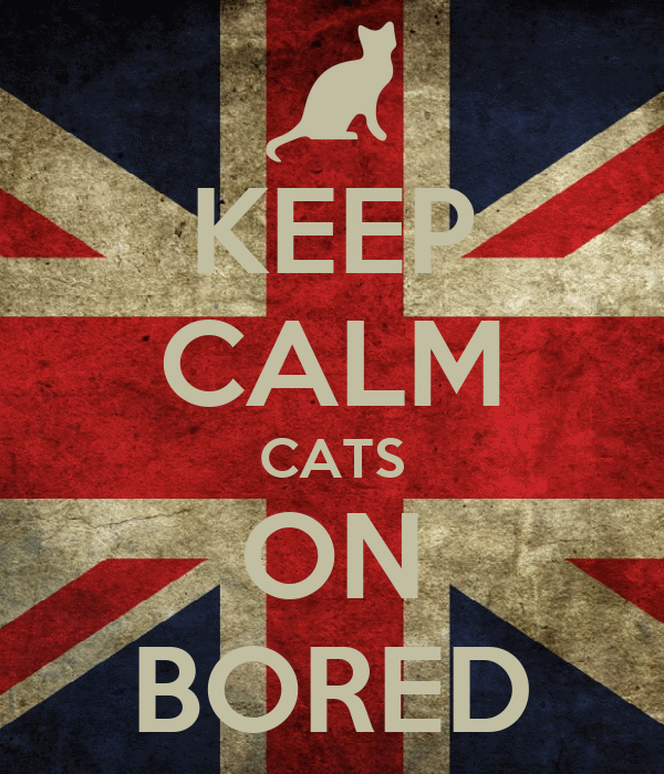 KEEP CALM CATS ON BORED