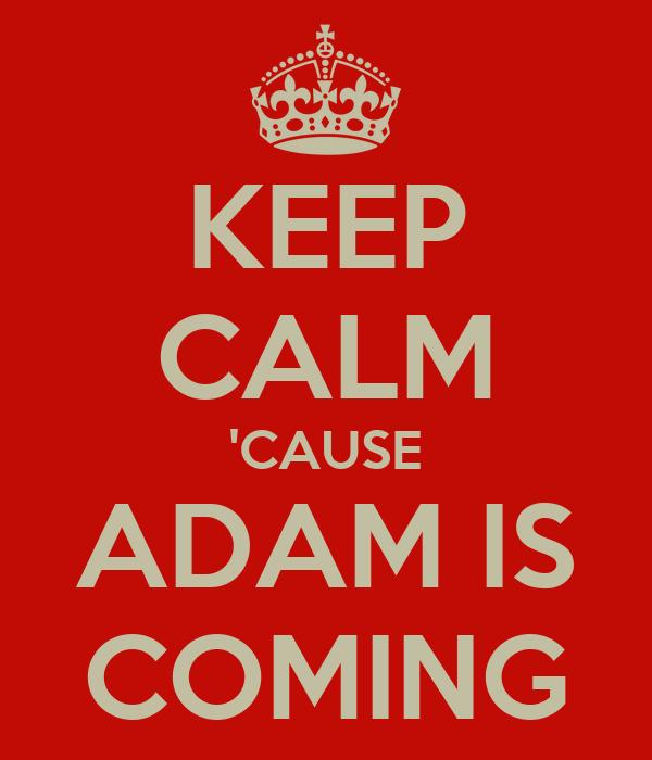 KEEP CALM 'CAUSE ADAM IS COMING