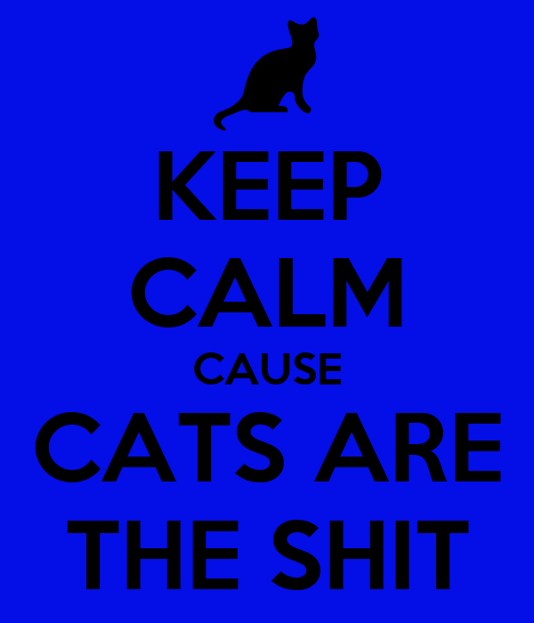 KEEP CALM CAUSE CATS ARE THE SHIT