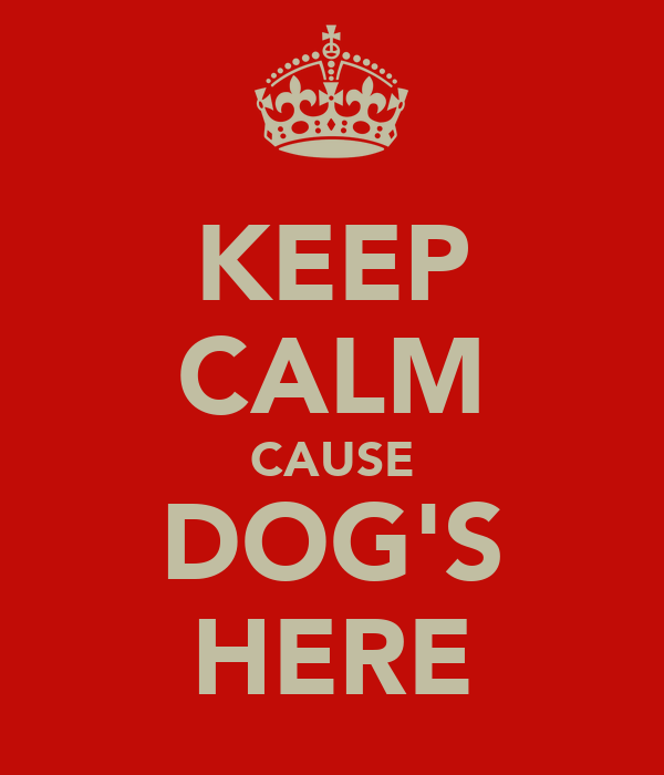 KEEP CALM CAUSE DOG'S HERE