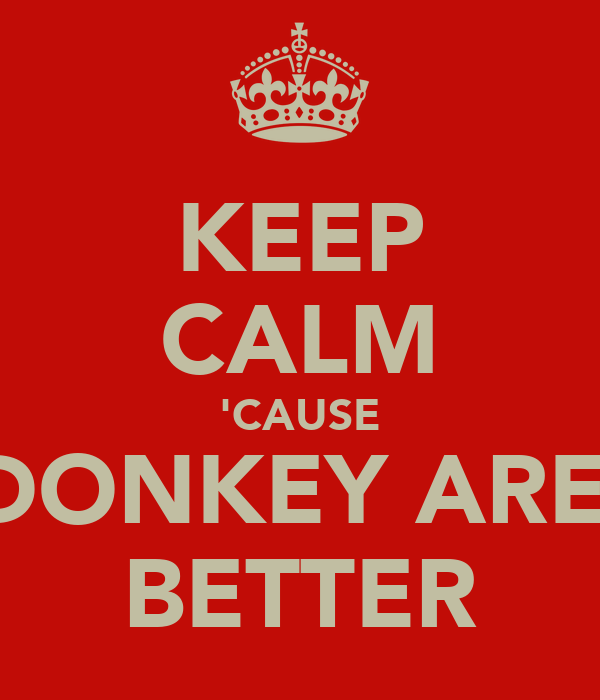 KEEP CALM 'CAUSE DONKEY ARE  BETTER