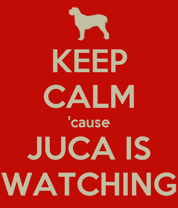 KEEP CALM 'cause JUCA IS WATCHING