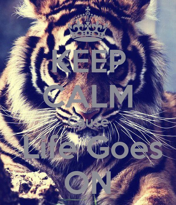 KEEP CALM Cause  Life Goes ON