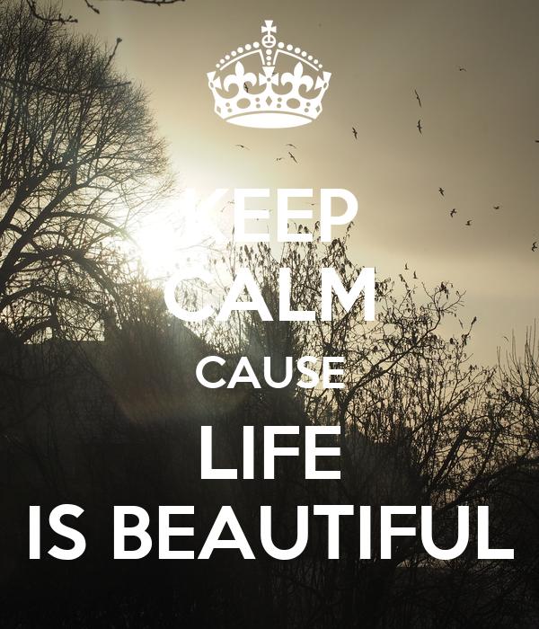 KEEP CALM CAUSE LIFE  IS BEAUTIFUL