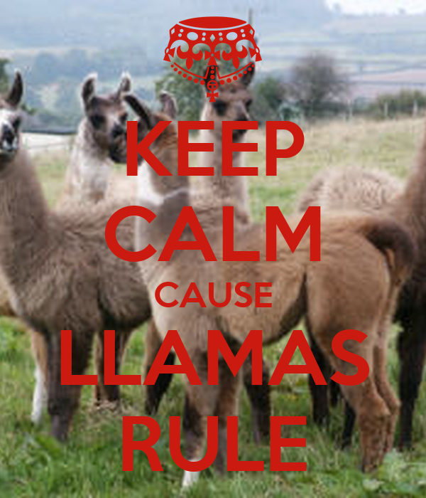 KEEP CALM CAUSE LLAMAS RULE