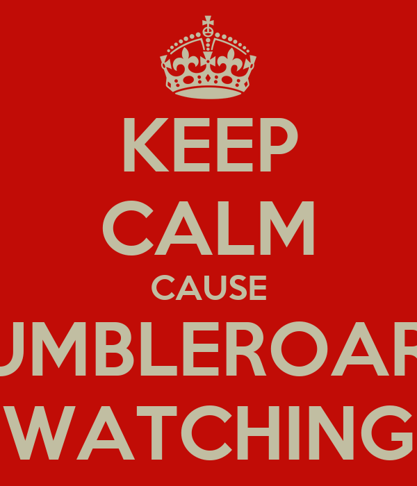 KEEP CALM CAUSE RUMBLEROAR'S WATCHING