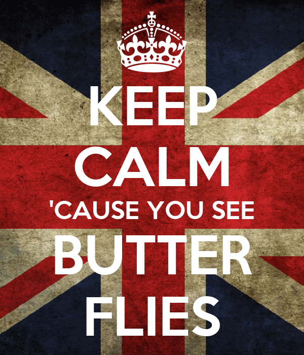 KEEP CALM 'CAUSE YOU SEE BUTTER FLIES
