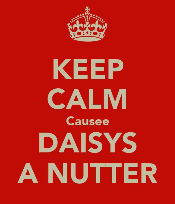 KEEP CALM Causee DAISYS A NUTTER
