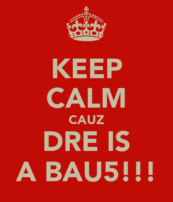 KEEP CALM CAUZ DRE IS A BAU5!!!