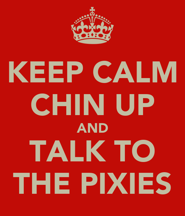 KEEP CALM CHIN UP AND TALK TO THE PIXIES