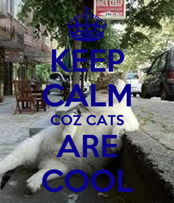 KEEP CALM COZ CATS ARE COOL