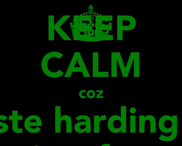 KEEP CALM coz ste harding  is a fag
