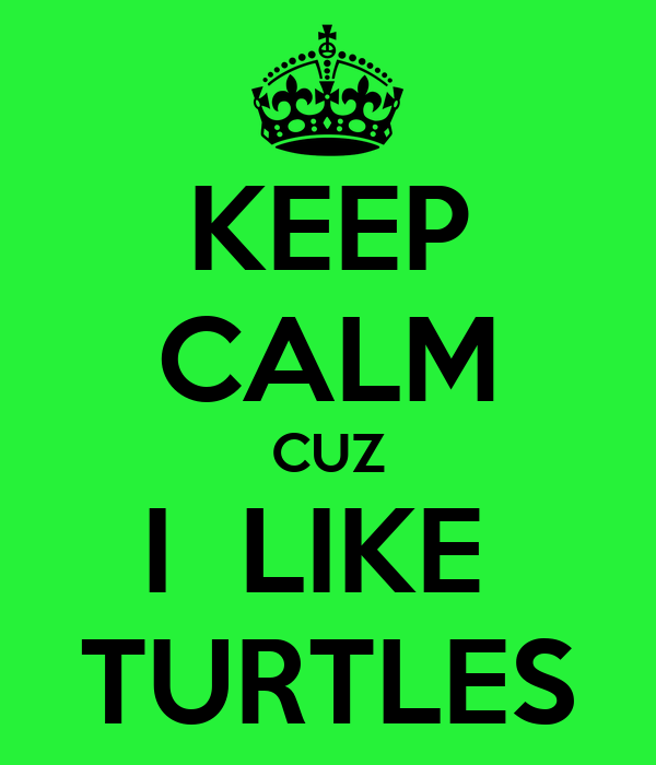 KEEP CALM CUZ I  LIKE  TURTLES
