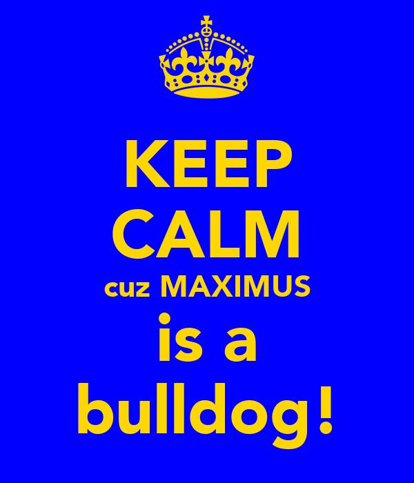 KEEP CALM cuz MAXIMUS is a bulldog!