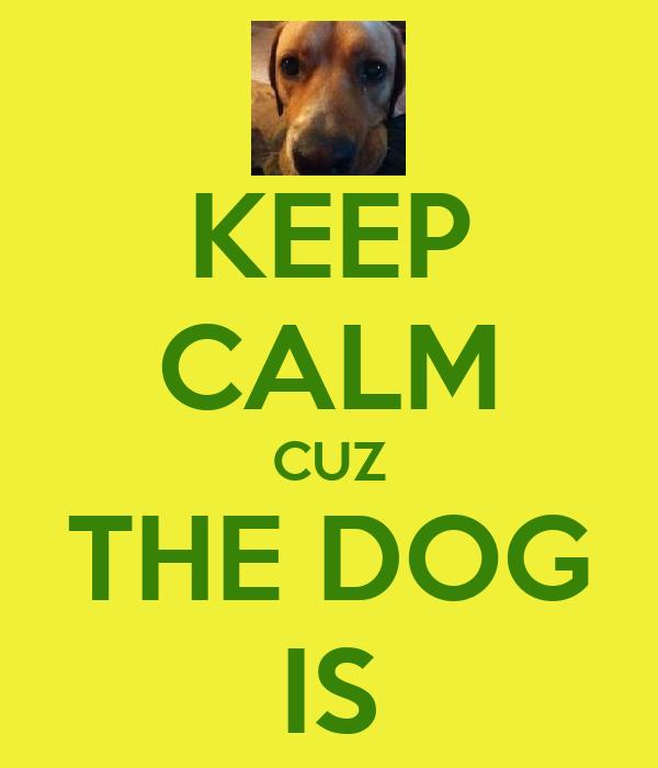 KEEP CALM CUZ THE DOG IS