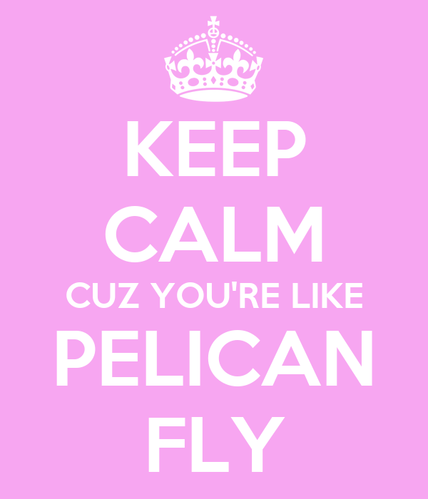 KEEP CALM CUZ YOU'RE LIKE PELICAN FLY