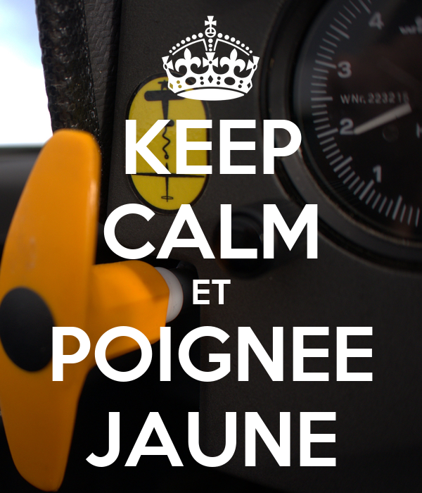 KEEP CALM ET POIGNEE JAUNE