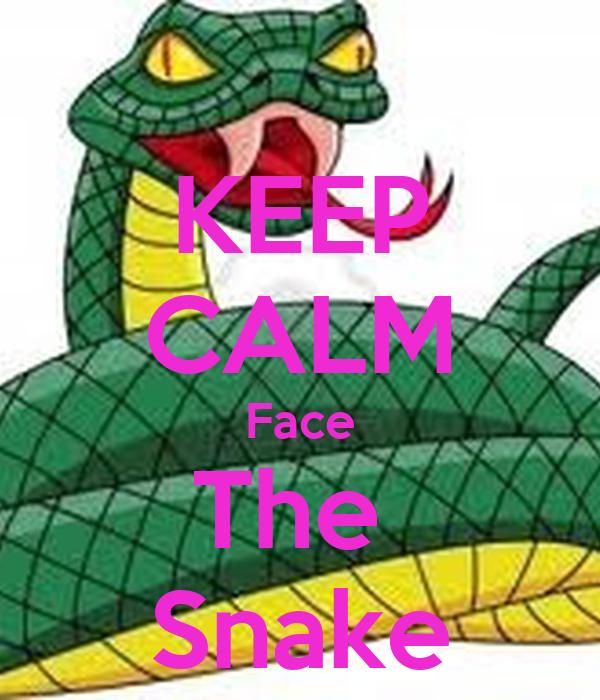 KEEP CALM Face The  Snake